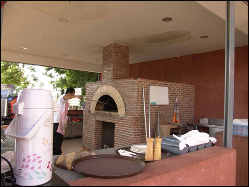 Wood burning pizza oven, pizza oven, wood fired pizza oven